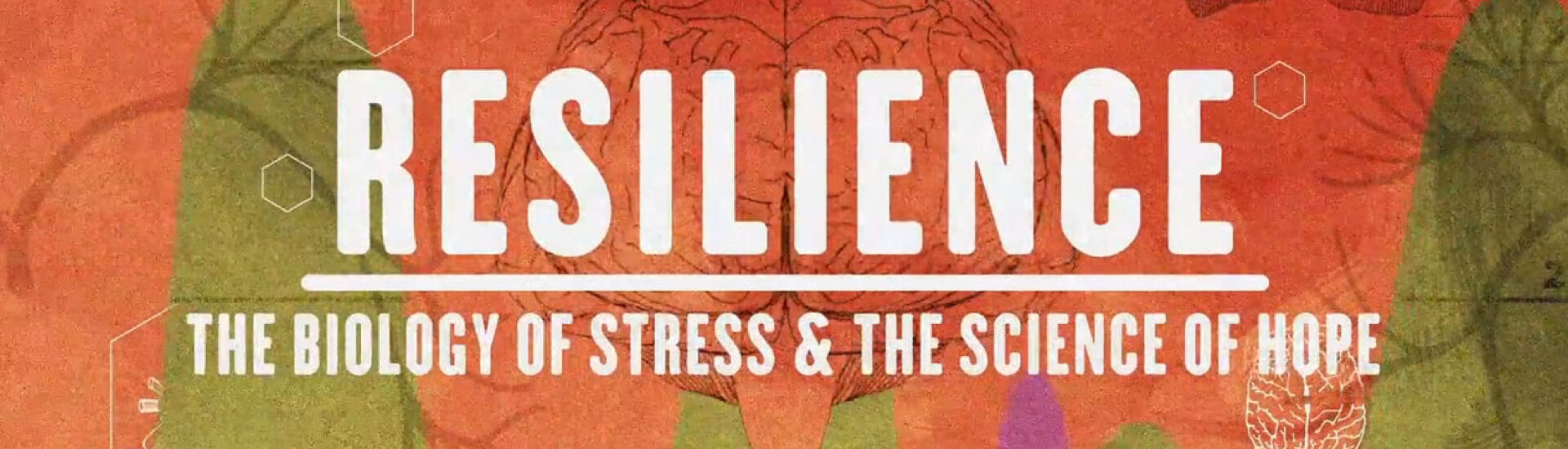 Resilience, the biology of stress and the science of hope